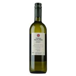 Terre Siciliane Bianco - Case of 6